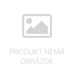 Gumová vaňa do kufra Škoda Rapid 2012- (liftback)